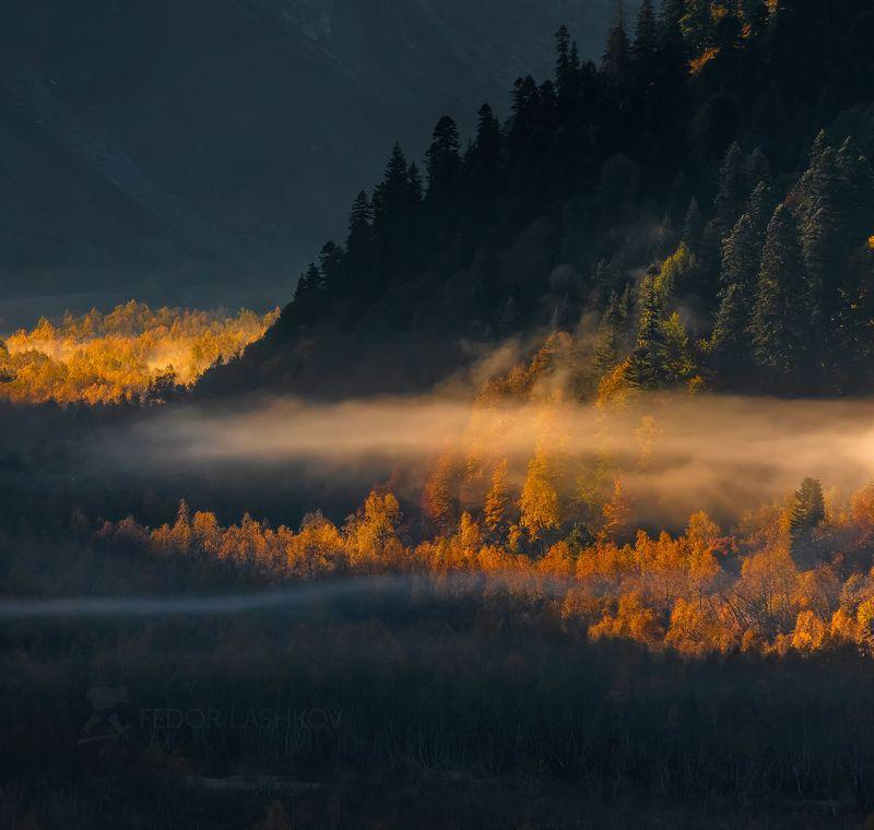 горы, гора, домбай, рассвет, осень, гоначхирском ущелье, тебердинский государственный природный биосферный заповедник, кавказ, осенний, туман, лес, Контрастphoto preview