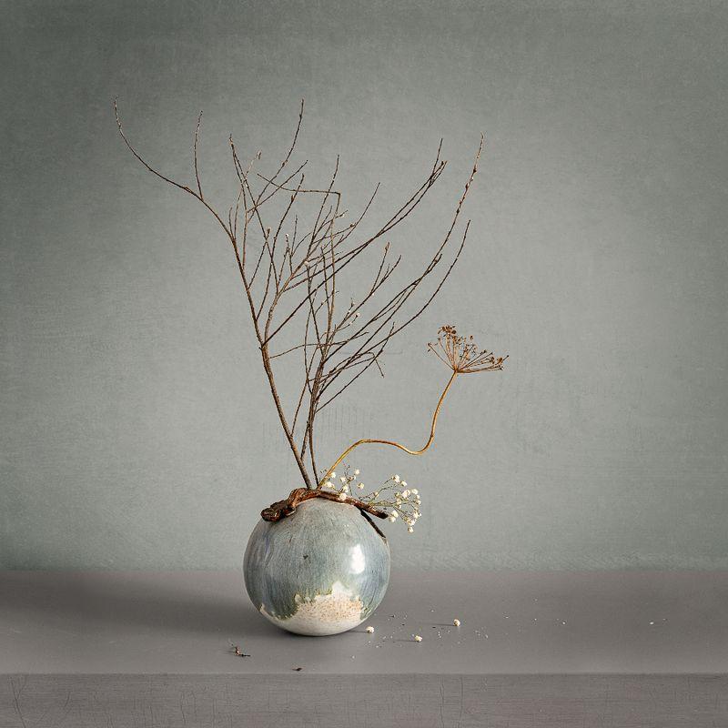 still life, натюрморт,    винтаж,    ветка, минимализм, натюрморт с сухими веточками. минимализмphoto preview