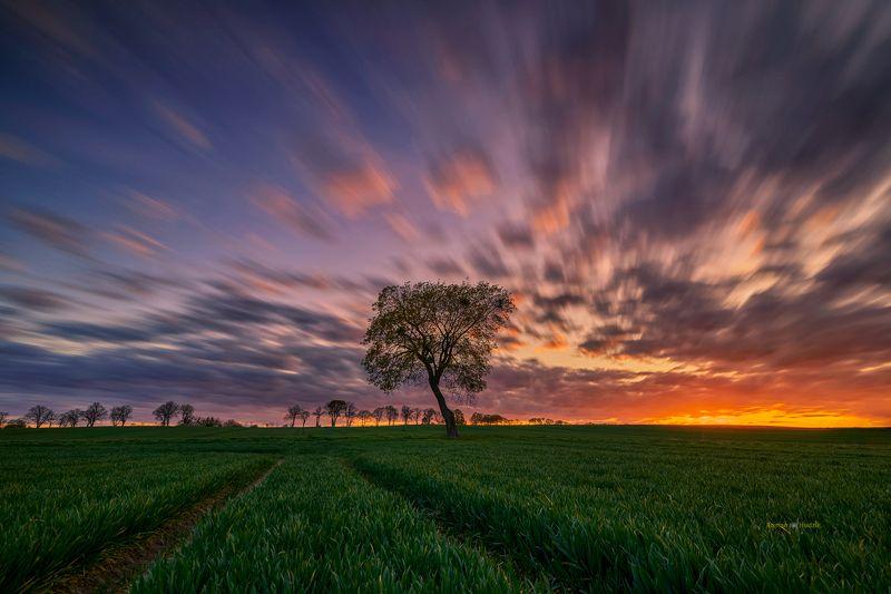 Kociewie, Poland, summer, landscape, sunset, clouds, fields, Kociewiephoto preview
