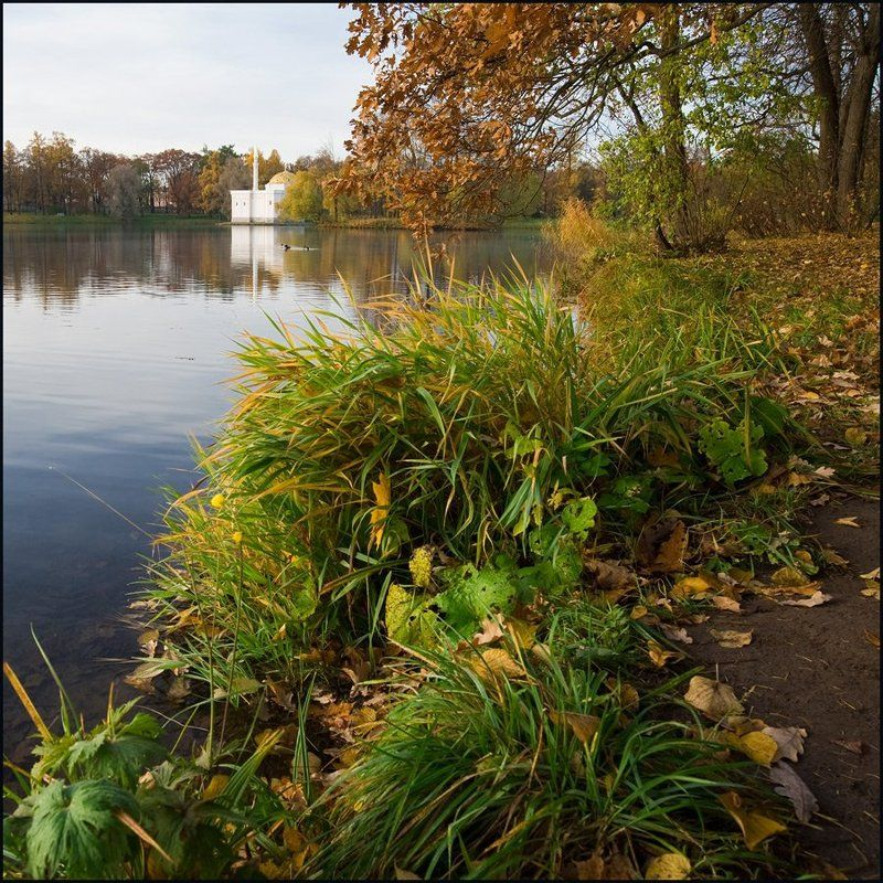 Осенние квадраты.photo preview