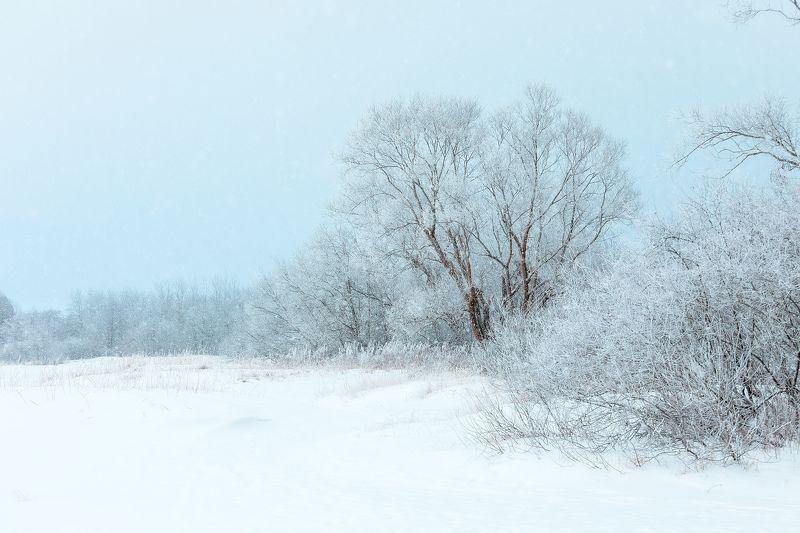 об ушедшей зиме