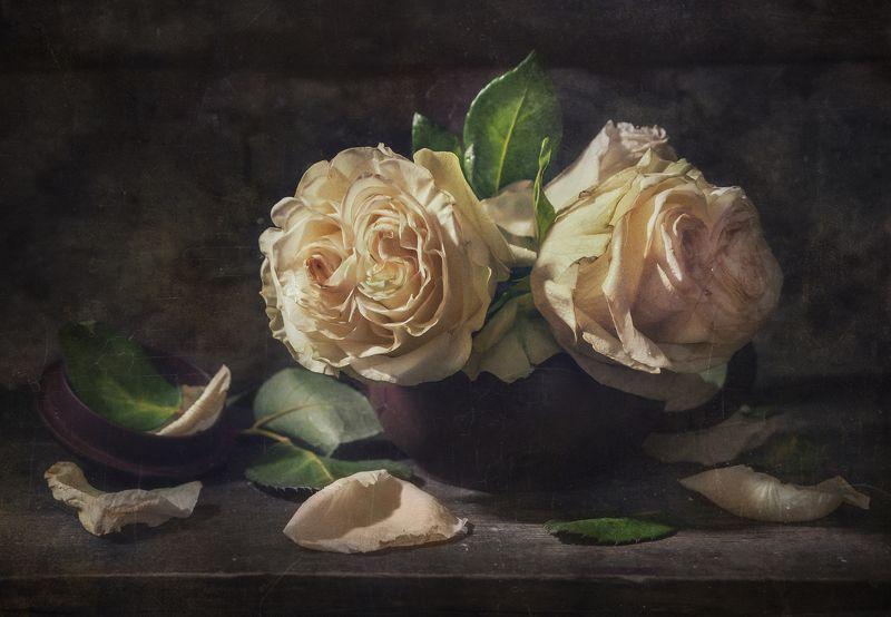 Ах...Эти Розы !