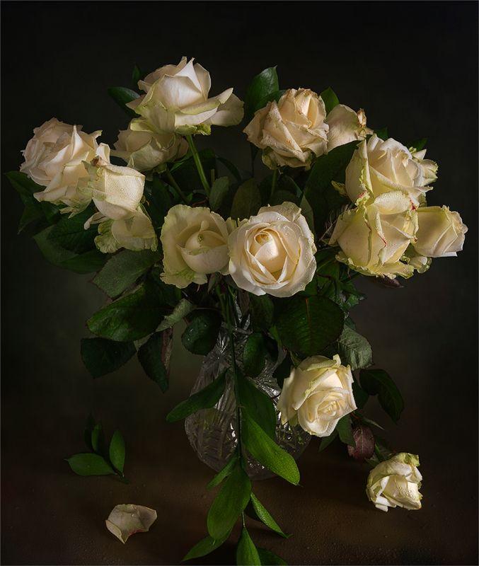 still life, натюрморт,    винтаж,    цветы,  букет, розы, букет розphoto preview