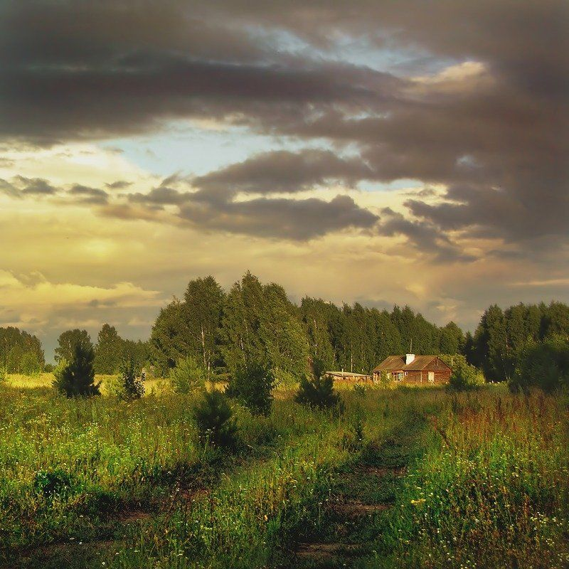 орловка, лето, дом, поле, дорога, лес, закат *photo preview