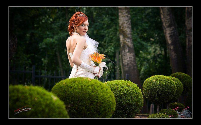 свадебнаяphoto preview