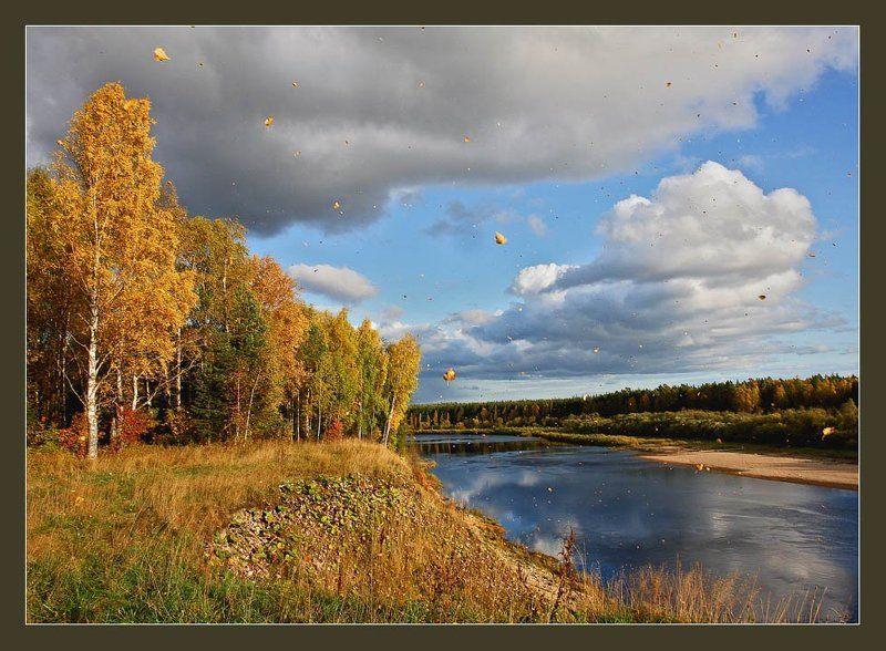 Просто осень...photo preview