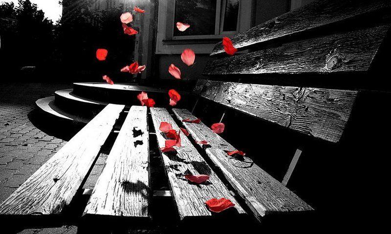 она ушла как ветер, оставив лишь лепестки роз...photo preview