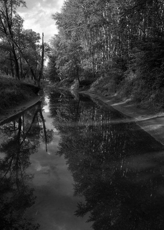 река, деревья, облака, отражения Отраженияphoto preview