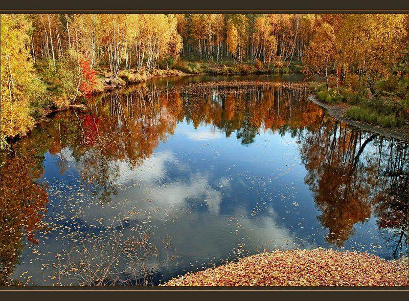 Осень идёт...photo preview