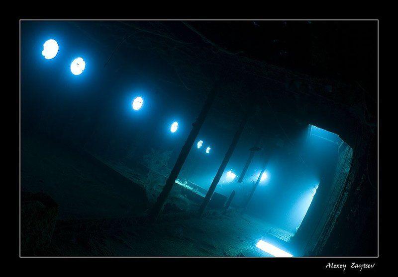 зайцев, подводное, фото, затонувший, корабль, красное, море, фотосафари Сияниеphoto preview