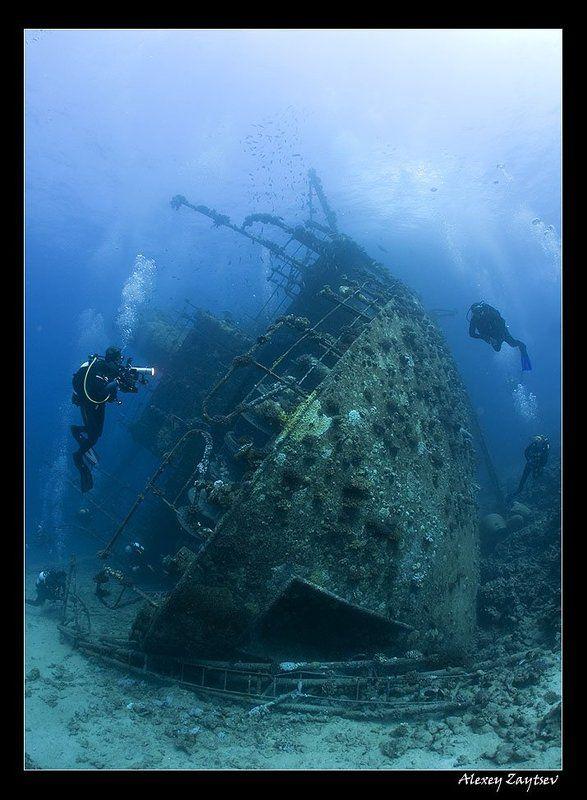 зайцев, подводное, фото, затонувший, корабль, красное, море Джанис Диphoto preview