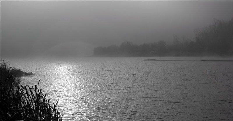 утро,река, туман, волны Волны светаphoto preview