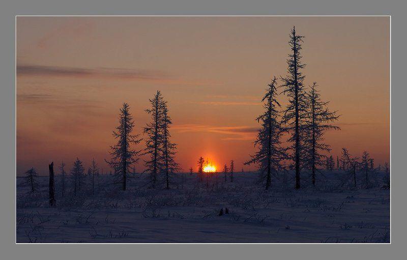 Скоро полярная ночь....photo preview