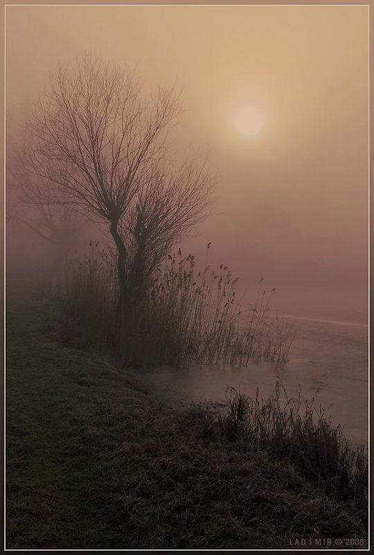 пейзаж, туман, утро, lad_i_mir Как сон чарующий туманphoto preview