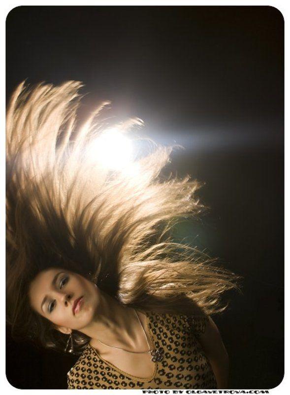 Ветер в головеphoto preview