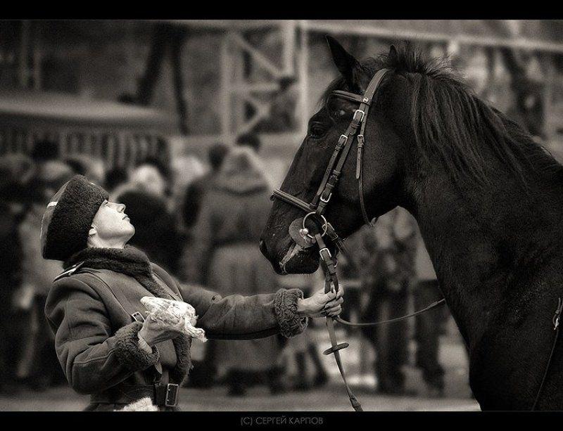 жанр, лошадь, дружище Дружищеphoto preview