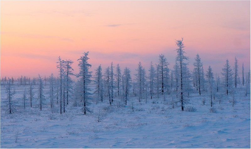 север, русский север, заполярье, приполярье, Раннее утроphoto preview