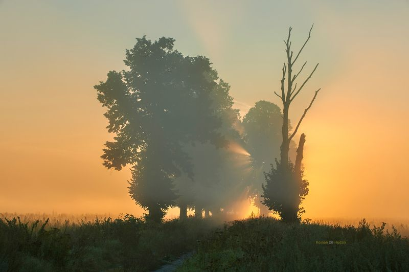 Misty morning, sunrise, landscape, fog, clouds, fields, Foggy morning.photo preview