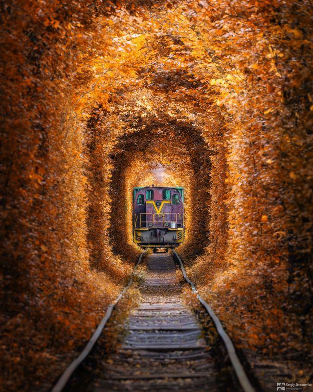 Туннель Любви и поездphoto preview