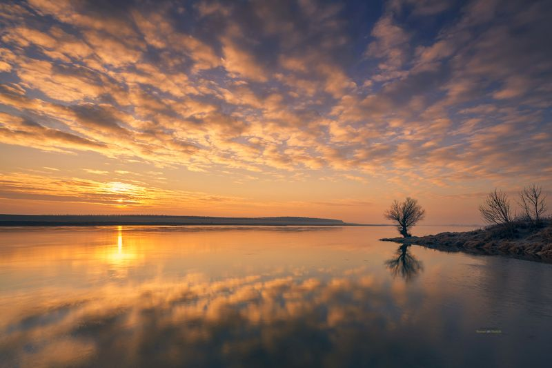 tree, sunrise, landscape, water, river, sun, clouds, Lone Tree.photo preview