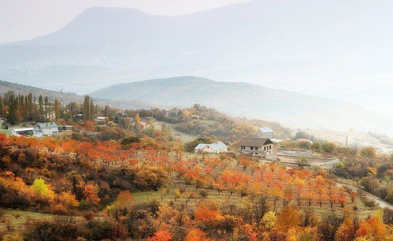 Осенний сад.photo preview