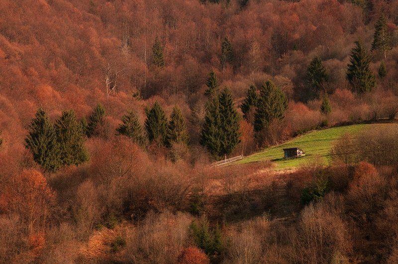 Осенний Форпостphoto preview