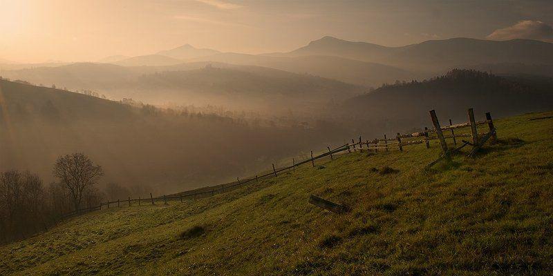 утро, туман, карпаты, холмы, горы На склонах утренних холмовphoto preview