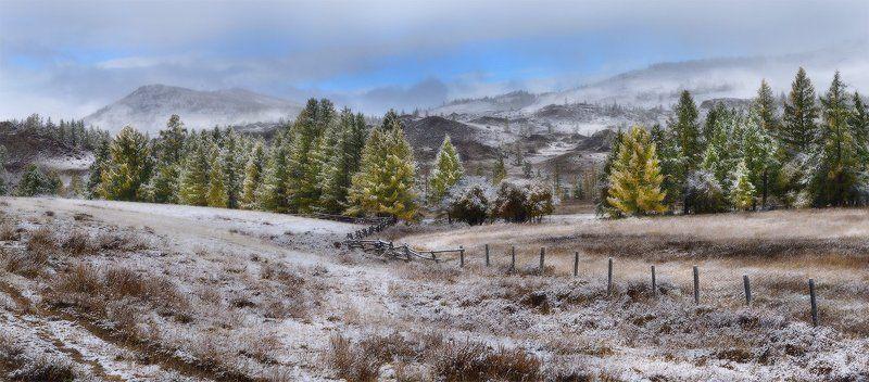 первый снегphoto preview