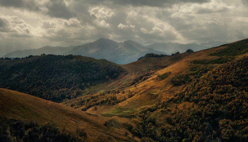 Осенний бархатphoto preview