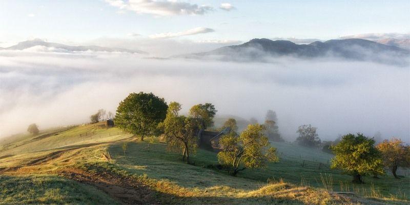 карпаты, пейзаж, природа, туман, черная тиса, рассвет, утро Рассвет на седьмом небеphoto preview