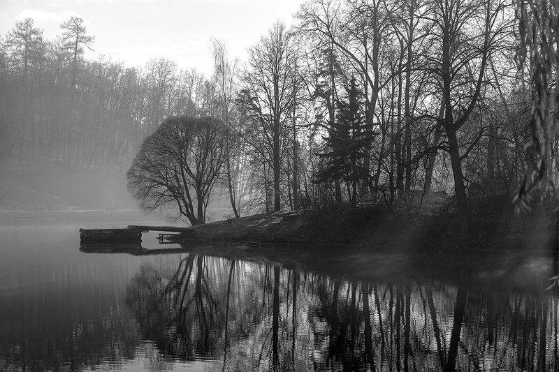 Отражение, Туман, Утро Тишинаphoto preview