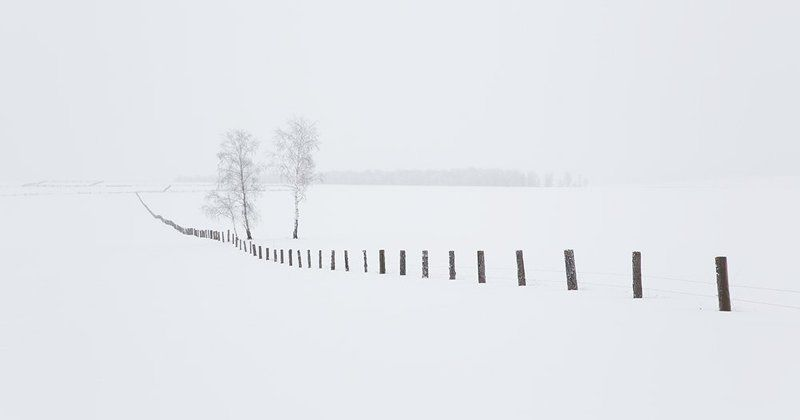 The winter of Siberiaphoto preview