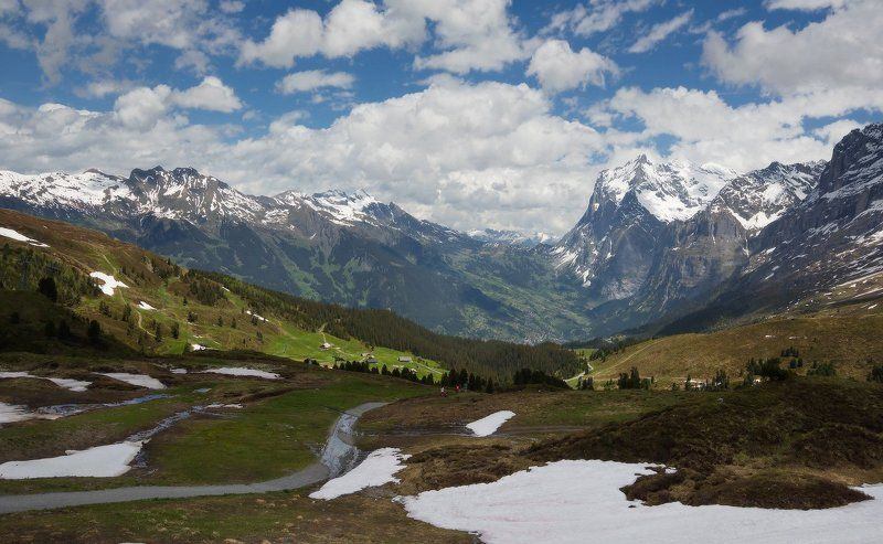 alps, альпы Альпы в июнеphoto preview