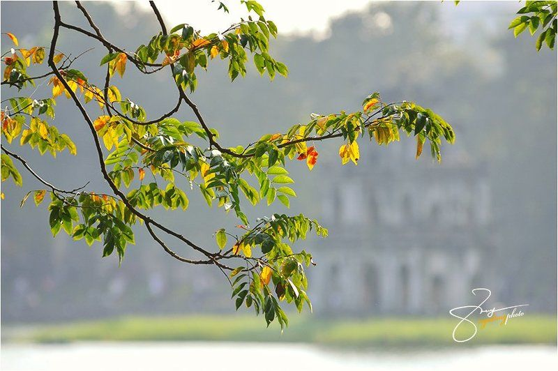 Ha Noi Autumnphoto preview