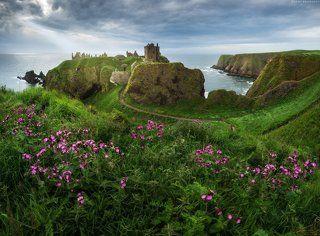 Сказки Шотландии