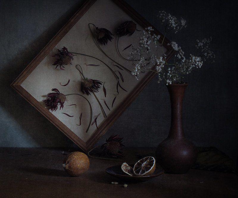 Лимон иссохший, Натюрморт, Сухие цветы Забвениеphoto preview