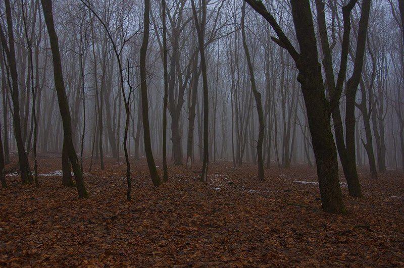 Зимний туманphoto preview