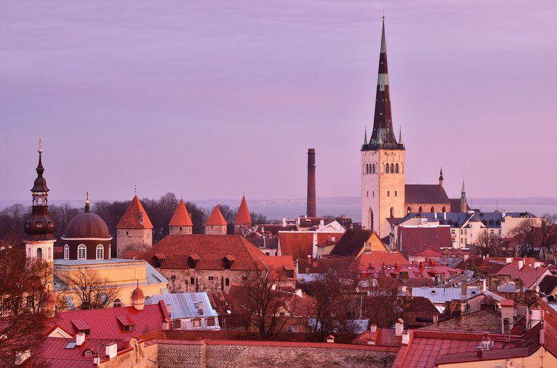 Утро в Таллинеphoto preview