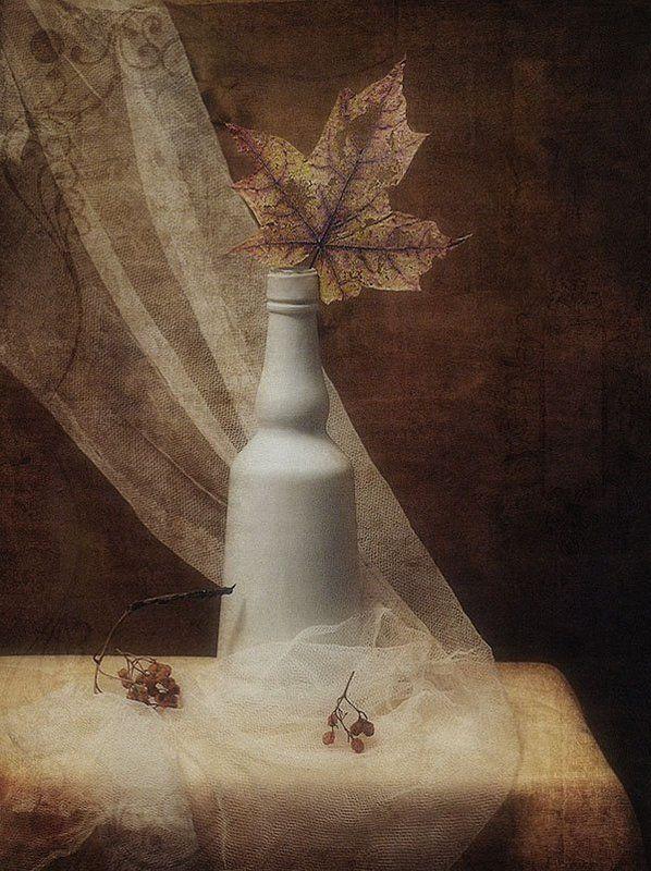 натюрморт, осень, лист Последний листокphoto preview