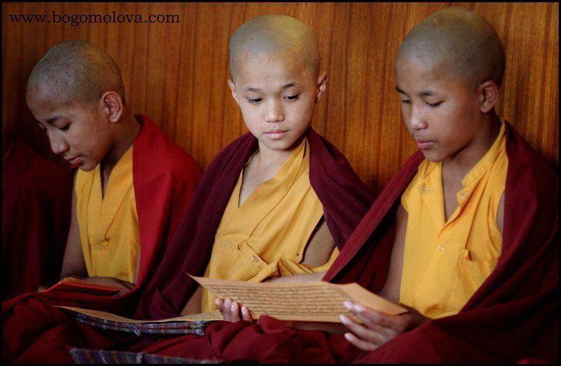 непал , монастрь , пуджа , маленький  лама, монахи маленькие Ламы на Пудже .Путешествие в Непалphoto preview