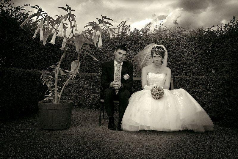 свадьба, невеста, жених, юмор, парк, небо, photo preview