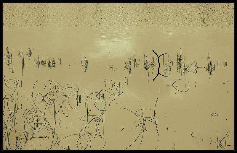 Графика природы... или озёрные иероглифыphoto preview