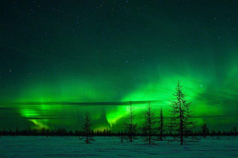 северное, сияние Краски Ямалаphoto preview