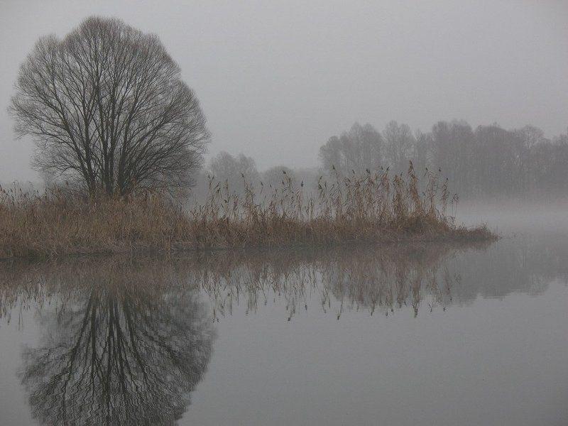 всех, с, наступающим, новым, 2009, годом, !!!!!!!!! Misty reflection…photo preview