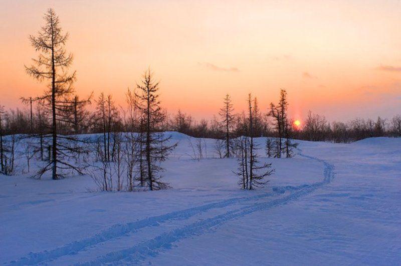 закат, небо, лыжня \