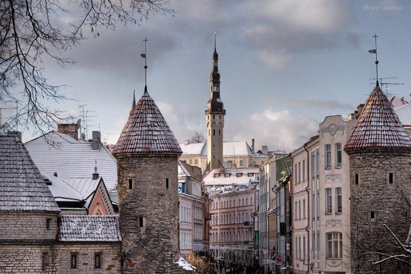таллин, таллинн, tallinn, cityscape, архитектура photo preview