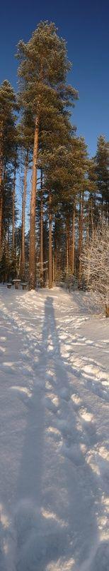 зима Отмороженные \