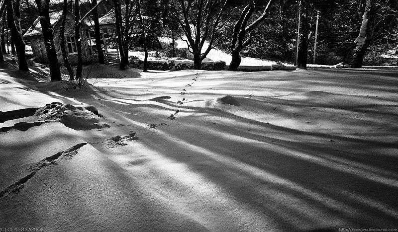 пейзаж, тени Тениphoto preview