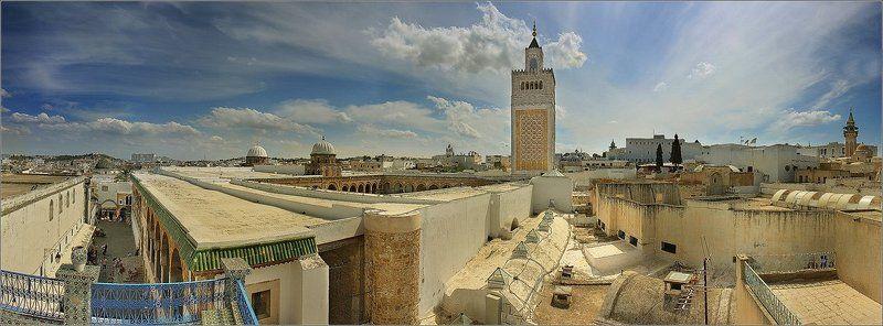 тунис ...над крышами Туниса...photo preview