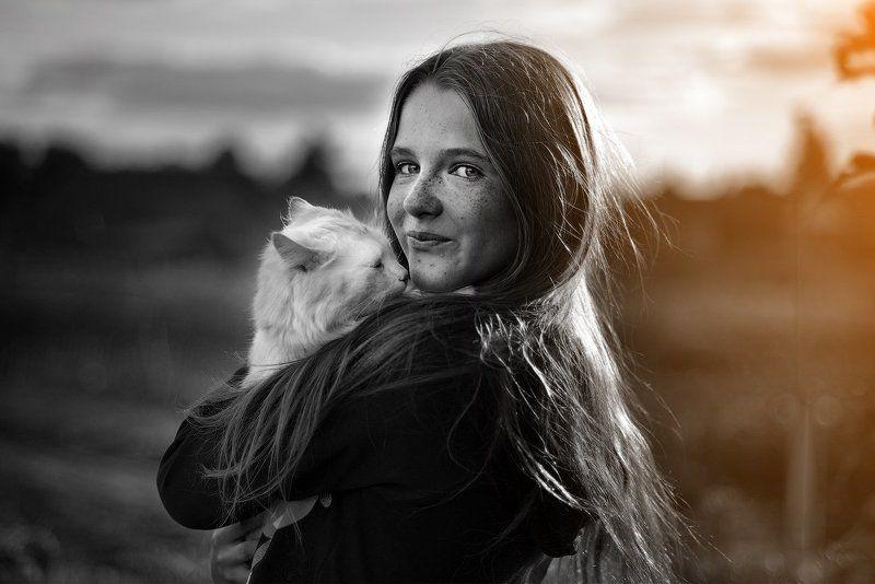 Вечер, Девушка, Закат, Кот, Россия Сенокосphoto preview